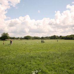 Parndon Mill 2007
